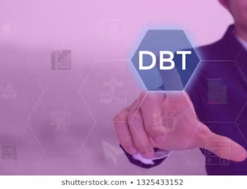 ¿Cómo la DBT protege y respeta al consultante?