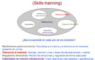 modulos del entrenamiento en habilidad DBT